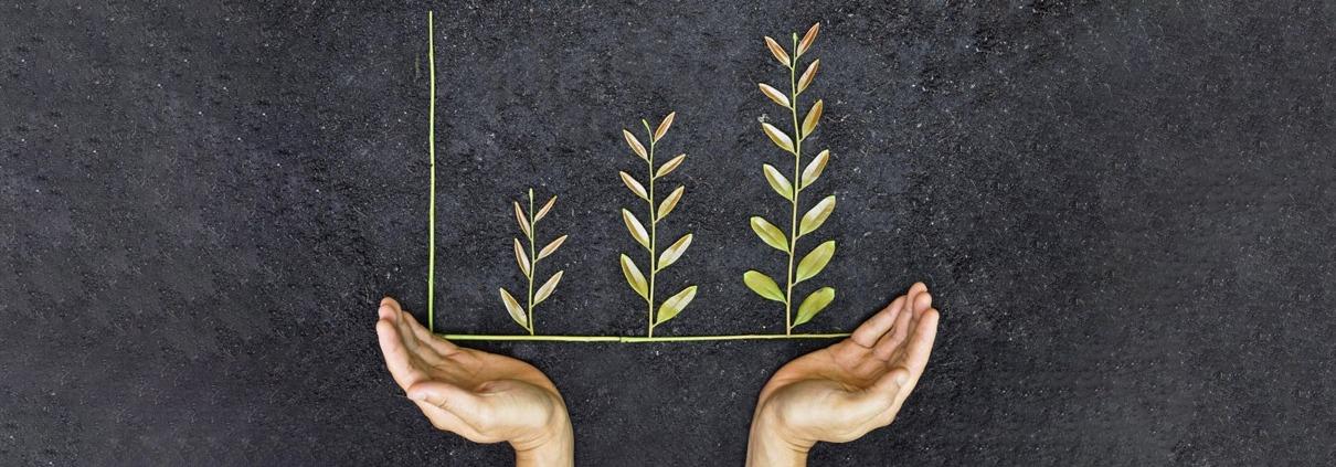 رشد کسب و کارهای کوچک و متوسط به کمک موسسات حسابداری