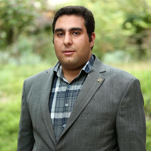 محمد علی ولی